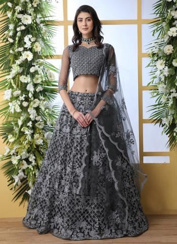 Grey Net Traditional Wear Thread Work Lehenga Choli
