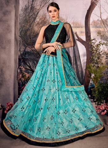 Sky Blue Net Party Wear Sequins Work Lehenga Choli