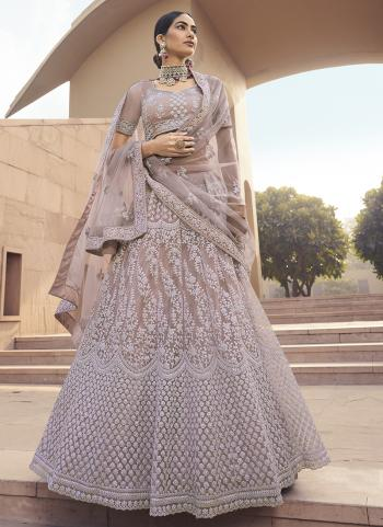 Brown Net Party Wear Embroidery Work Lehenga Choli