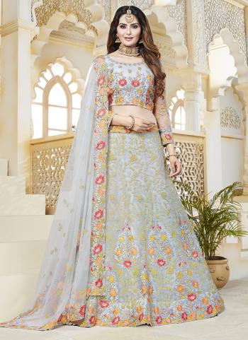 Grey Net Bridal Wear Embroidery Work Lehenga Choli