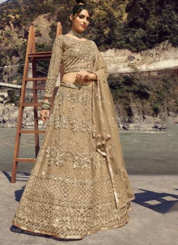 Beige Net Bridal Wear Embroidery Work Lehenga Choli