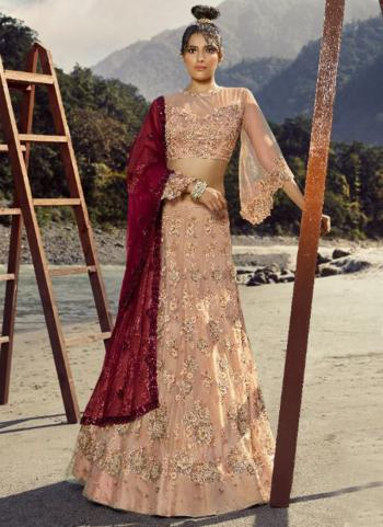Pink Net Bridal Wear Embroidery Work Lehenga Choli