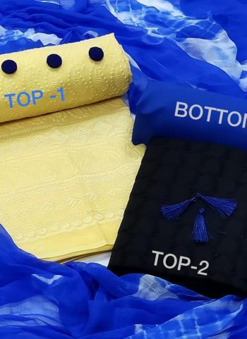 Blue Cotton Regular Wear Chikan Work Salwar Suit