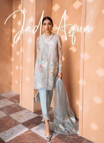 Blue Net Party Wear Embroidery Work Pakistani Suit