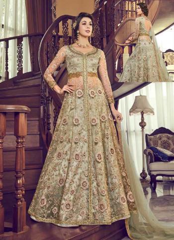 Light Green Net Reception Wear Heavy Embroidery Work Anarkali Suit