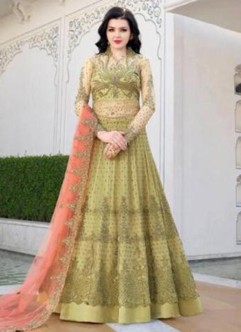 Light Green Net Wedding Wear Heavy Embroidery Work Anarkali Suit