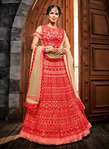 Red Net Bridal Wear Embroidery Work Lehenga