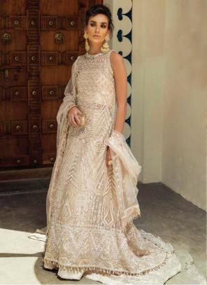 Cream Net Georgette Party Wear Hand Work Pakistani Suit